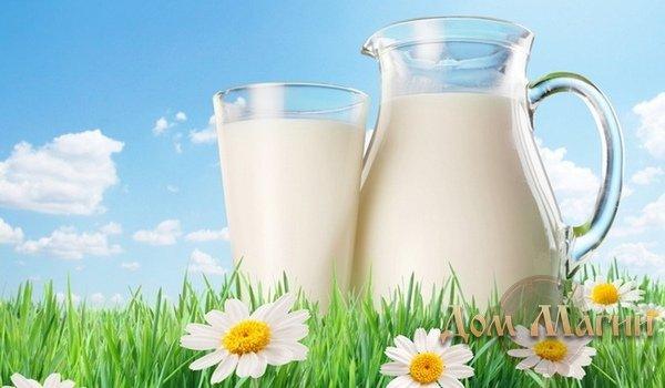 Приворот парня: обряды с помощью молока
