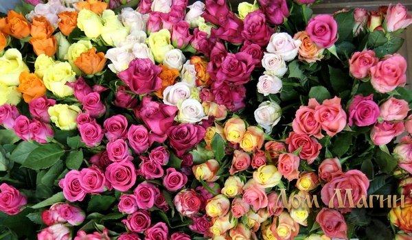 Сонник много букетов цветов к чему снится много букетов цветов во сне