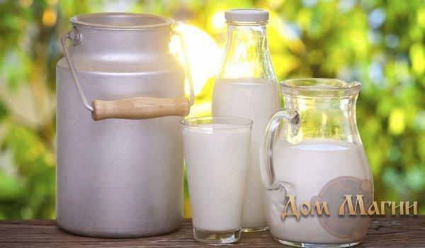 К чему снится молоко? Сонник - прокисшее молоко во сне    Сонник прокисло молоко
