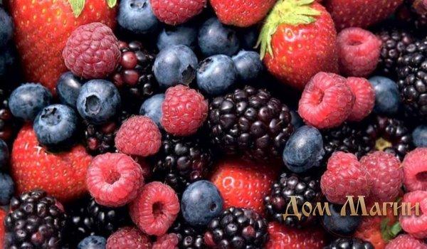 К чему снятся ягоды? Сонник – крупные ягоды во сне предвещают крупную прибыль.