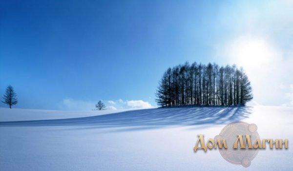 Снежное поле во сне